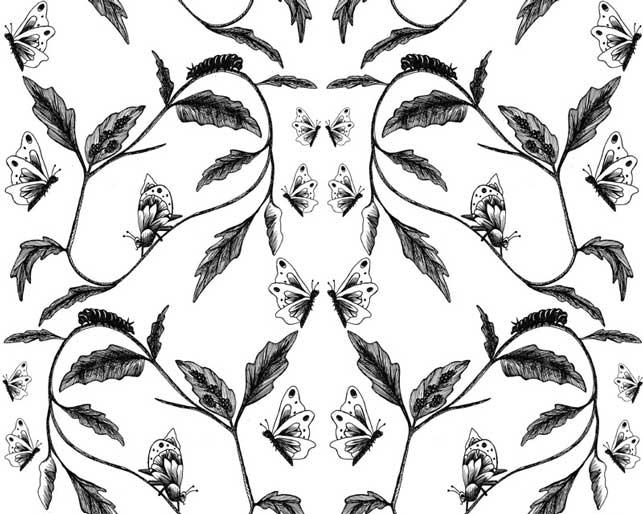 Butterfly Digital